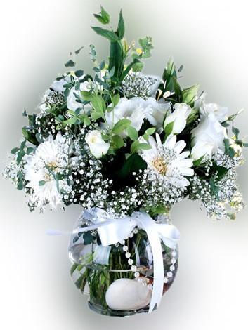 Beyaz Kýr Çiçekleri