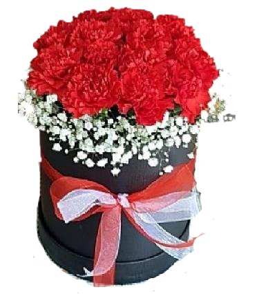 Kutu Ýçinde Kýrmýzý Çiçekler