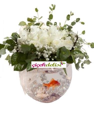 Cam fanusta beyaz gül ve japon balığı