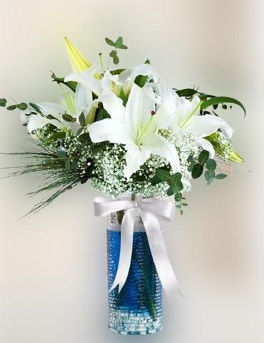 Mavi Suda Lilyumlar
